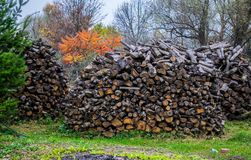 Stock of firewood for the winter. In ukrainian village royalty free stock photography