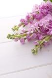 Stock flower. On white floor Stock Photo