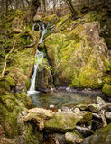 Stock Ghyll Force water fall Stock Photography
