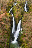 Stock Ghyll waterfall Stock Photos