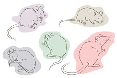 Stock illustration. Outline of the mouse in a different position Royalty Free Stock Images