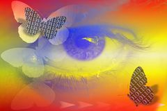 Stock Image of Abstract Binary Code and Eye as Digital Vision Concept. Abstract illustration with bunary code butterflies , eye , dollar and information signs as royalty free illustration