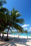 Stock image of Doctor's Cave Beach Club, Montego Bay, Jamaica Stock Photos
