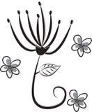 Stock Image: The flowers Stock Photo