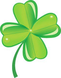 Symbol, clover Stock Photos