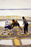 Stock image of Ice Hockey Game Royalty Free Stock Photo