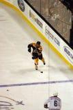 Stock image of Ice Hockey Game at Boston.  stock image