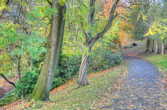 Stock image of Kelvingrove Park - Glasgow, Scotland Stock Photo