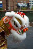 Stock image of Lion Dance Stock Photography