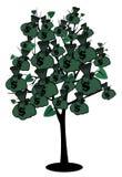 Stock image money tree Royalty Free Stock Photography