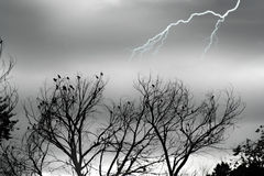 Free Stock Image Of Silver Storm Royalty Free Stock Photos - 1851238