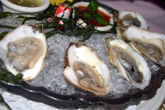 Stock image of oyster in half shell Royalty Free Stock Images