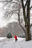 Stock image of a snowing winter at Boston, Massachusetts, USA. Stock Photo