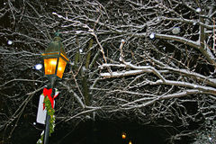 Stock image of a snowing winter at Boston, Massachusetts, USA. Stock Images