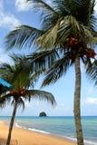 Stock image of Tioman island, Malaysia Stock Images