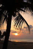 Stock image of Tioman island, Malaysia Stock Photography