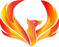 Stock logo flying fire phoenix Stock Images