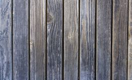 Stock macro photo of the texture of wood.  stock image