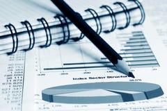 Stock market graphs and charts Royalty Free Stock Photo