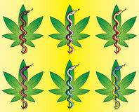 Stock  medical marijuana grunge stamp with snake  illustration Royalty Free Stock Photos