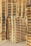 Stock of new wooden euro pallets at transportation company. Stock Image