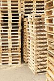 Stock of new wooden euro pallets at transportation company. Stock of new wooden pallets at transportation company Stock Image