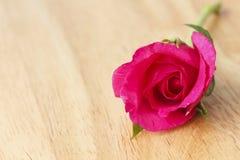 Stock Photo:Beautiful red rose close-up Stock Photo