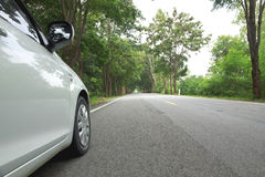 Stock Photo:Car on asphalt road on summer day at park Royalty Free Stock Photo