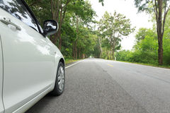 Stock Photo:Car on asphalt road on summer day at park Royalty Free Stock Image
