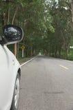 Stock Photo:Car on asphalt road on summer day at park Stock Photos