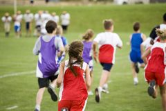 Stock Photo of a Cross Country Race. Photo of cross country runners racing Royalty Free Stock Image
