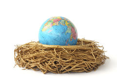 Stock Photo:Earth in bird nest Stock Photography