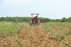 Stock Photo: Farmer was drove tractor plowing the soil to picup. Farmer was drove tractor plowing the soil to harvest cassava stock photos