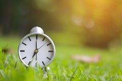Stock Photo:Garden background with retro alarm clock Stock Photos