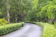 Stock Photo:Garden walk way Stock Photography