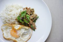 Stock Photo - Spicy Duck basil with fried egg. Stock Photo - hot Spicy Duck basil with fried egg royalty free stock photos