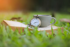 Stock Photo:Morning Tea Party. Selective focus on Pocket Watch Stock Photo