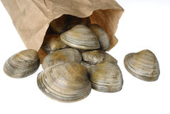 Stock Photo Of Clams In Paper Bag Stock Photography