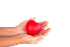 Stock Photo - Red heart in woman hand Stock Photos