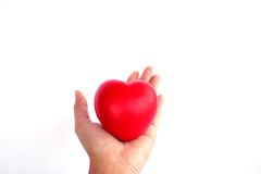 Stock Photo - Red heart in woman hand Royalty Free Stock Image