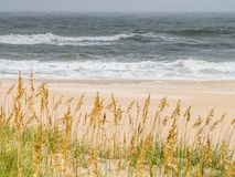 Sand dunes at the ocean cost Stock Photography