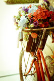 Stock Photo:Soft focus on winter flower bicycle - vintage Stock Photos
