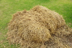 Stock Photo:Stack of hay on the field Stock Photo