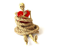 Stock Photo:Still life with Human skeleton with rope on white Stock Photo