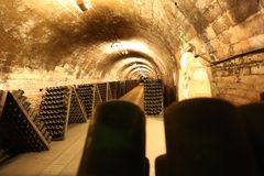 Bottling wine in bottles in the cellar royalty free stock images