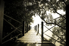 Stock Photo:Wooden bridge in the forest. Vintage filter dark sh Royalty Free Stock Images