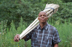 Stock photograph of South African entrepreneur small business broom salesman. Stock photograph of a black South African entrepreneur small business broom royalty free stock photos