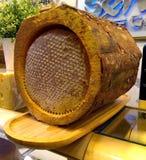 Stock photos of golden honey in tree bark royalty free stock photos