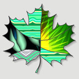 Stock single  maple leaf.patchwork design. autumn patter Stock Photo