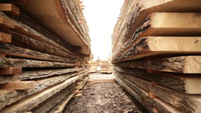 Stock timber wood stock video